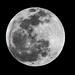 Claro de Luna por Jesús Aceves-Loza