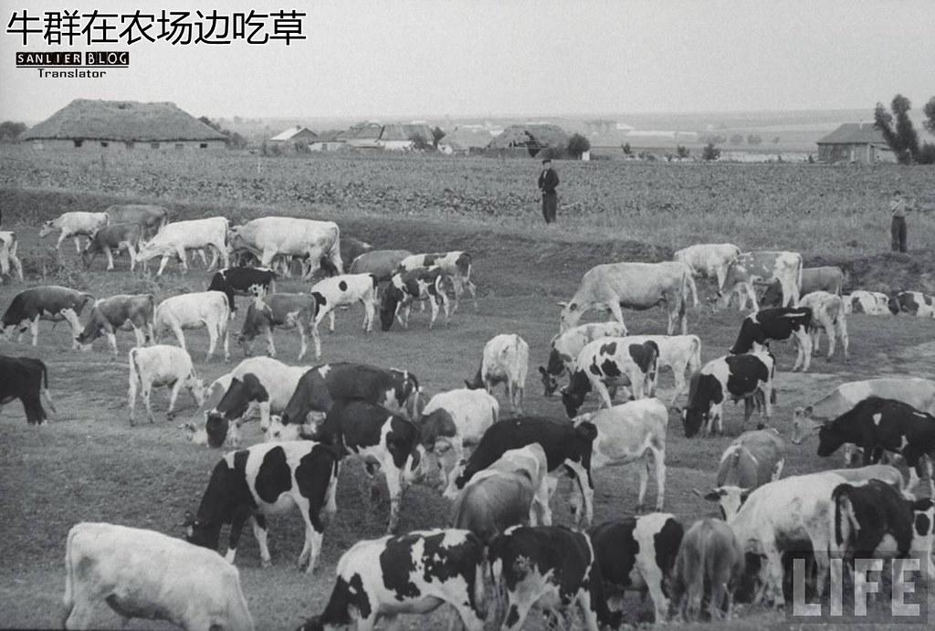 1958-1960年苏联(杰瑞·库克 摄)49