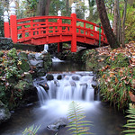 Japanese Bridge, Clyne Gardens