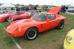 shelby daytona(0.0), ferrari 250 gto(0.0), lamborghini miura(0.0), tvr(0.0), race car(1.0), automobile(1.0), vehicle(1.0), land vehicle(1.0), supercar(1.0), sports car(1.0),