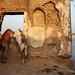 Window - Varanasi, India by Maciej Dakowicz
