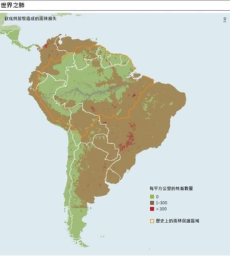 巴西雨林的損失與復原