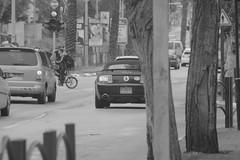 צילומי רחוב+spoting 034