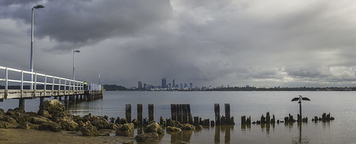 city panorama bird water weather skyline clouds photoshop river landscape 50mm scenery rocks cityscape jetty sony scenic australia alpha westernaustralia swanriver applecross a99 sal50f14 cityofperth slta99 stevekphotography