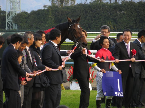 39th Queen Elizabeth II Cup - Kyoto Racecourse