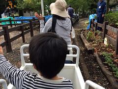 世田谷公園 ミニSL