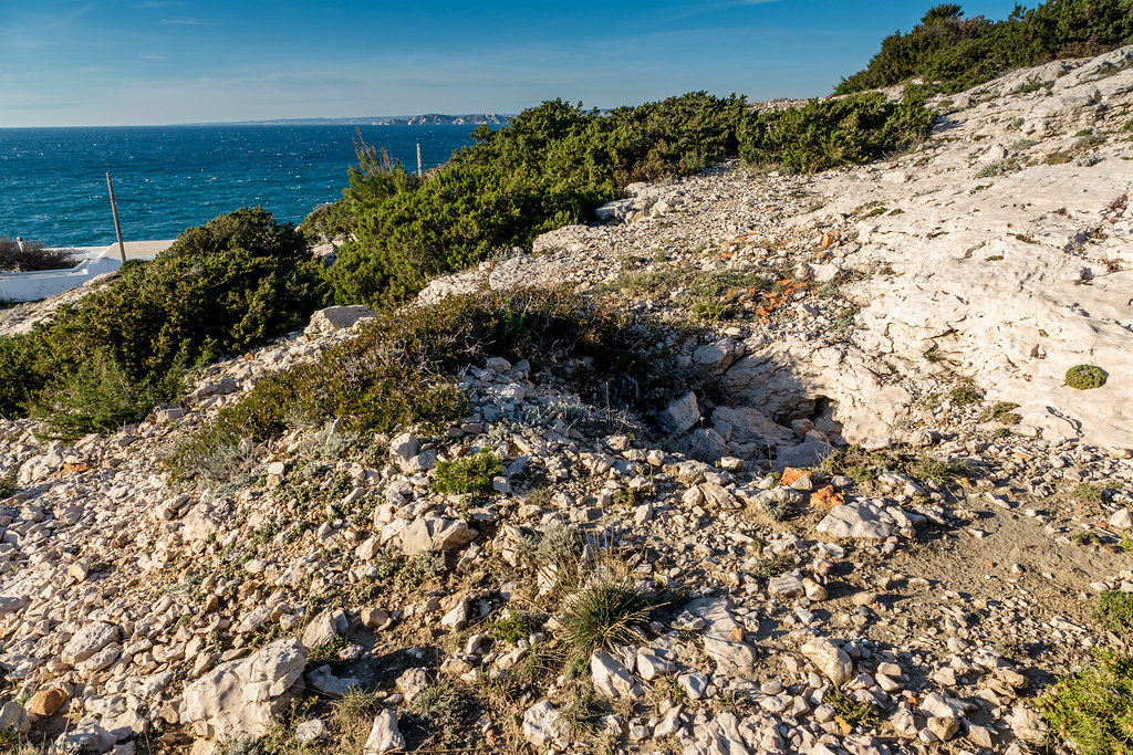 Mar 183, HKB 5./1291 Escalette bas (calanques,Marseille 13) - Page 6 15928371777_dbef909ddc_b