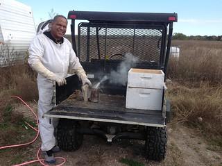 Refugee Women Beekeepers