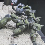 GBWC2014_World_representative_exhibitions-64