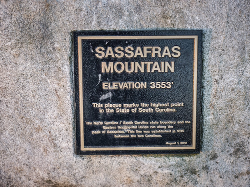 Sassafras Sunrise on New Years Day-25