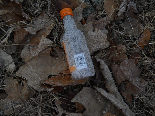 tiny bottle orange cap
