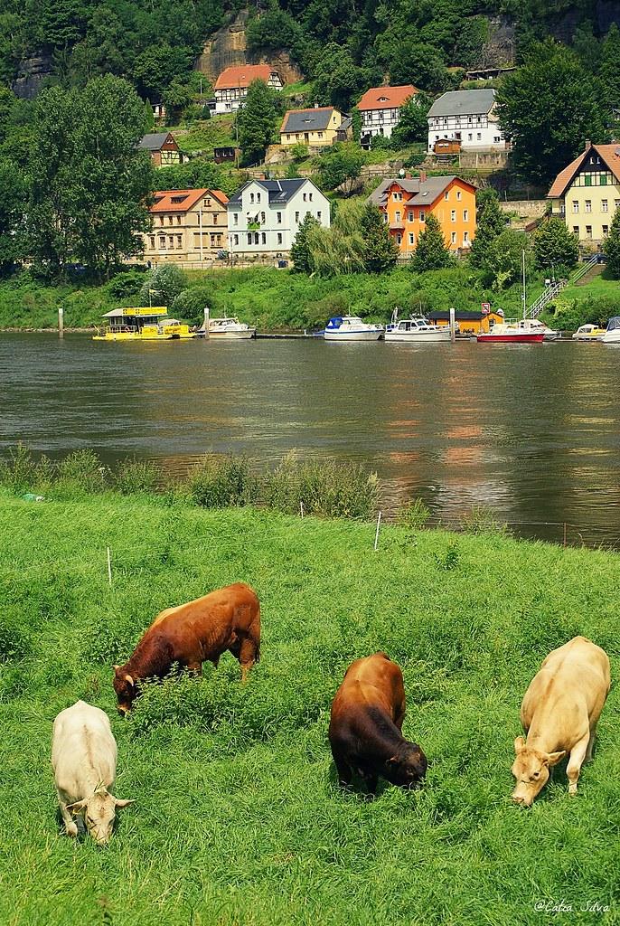 Ruta en bici - Frontera Alemania con Republica Checa (3)