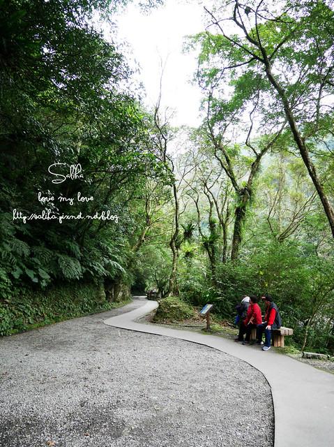 烏來景點內洞森林遊樂區 (1)