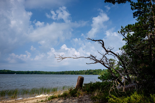 trees sand landscape fontlake forest woods water mi sky nature lake branches beaverisland clouds michigan unitedstates us