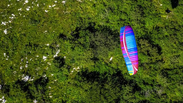 Kolorowa paralotnia na tle drzew