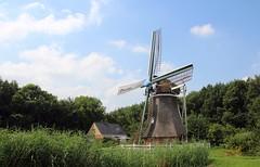 Nederland - Groningen - Wedde - Weddermarke - 1898