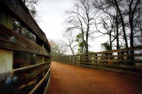bridge december texas grapevine hikeandbiketrail canon7d acornwoods canonefs1585mmf3556isusmlens