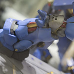 GBWC2014_World_representative_exhibitions-55