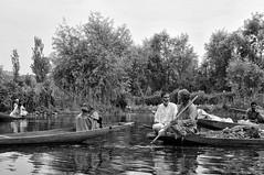 Life on a Lake | B&W photo-essay 4/7m