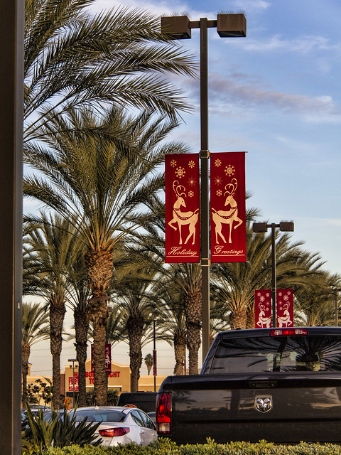 Downey Landing Christmas decorations