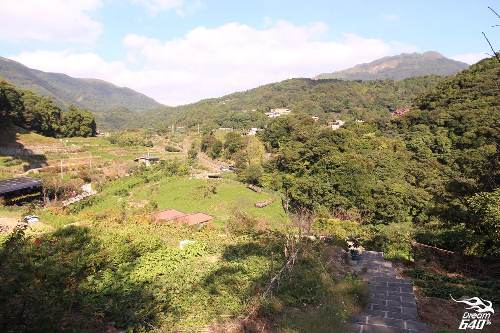竹子湖青楓步道20