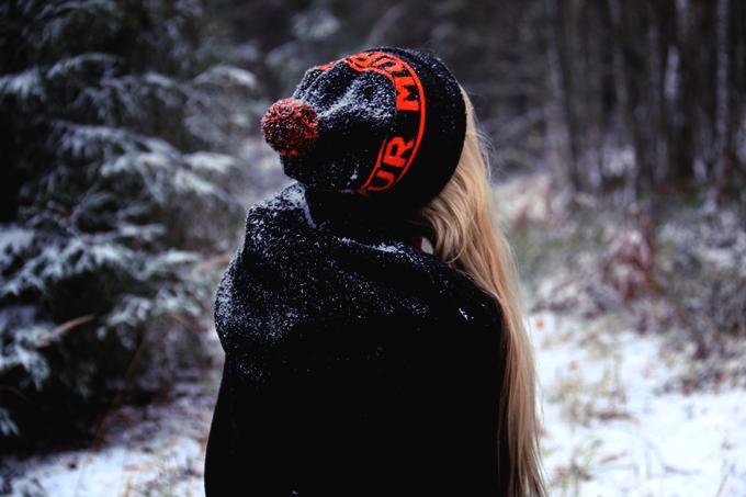talvi 061