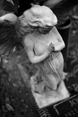 Angel, Plate 2