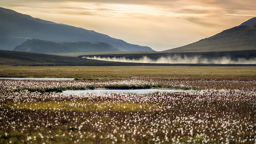 sunset iceland south dustclouds wollgras dustcloud cottongras