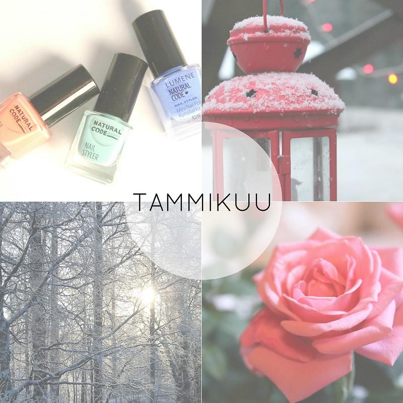 1 TAMMI