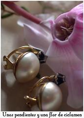 flower, purple, violet, pearl, lilac, jewellery, lavender, gemstone, earrings, pink, petal,