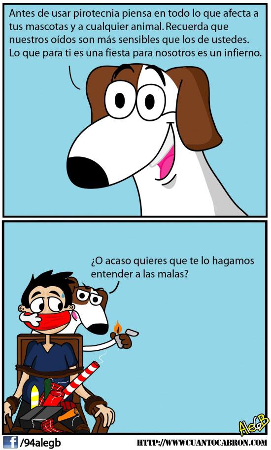 http://www.cuantocabron.com/otros/los-perros-quieren-que-entiendas-algo-por-las-buenas-o-por-la-malas