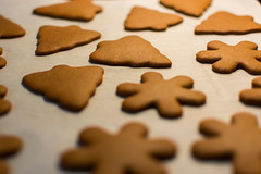 baking, bredele, baked goods, cookies and crackers, gingerbread, food, cookie, snack food,
