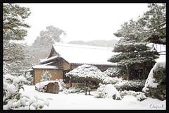 日本京都-金閣寺-雪.53