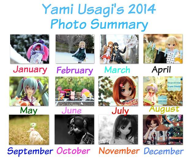 photo summary 2014