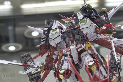 GBWC2014_World_representative_exhibitions-213