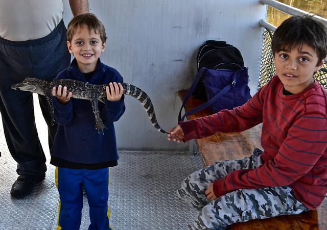 gator - jean lafitte swamp tours