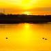 Sunset at Longham North Reservoir, Dorset by JackPeasePhotography