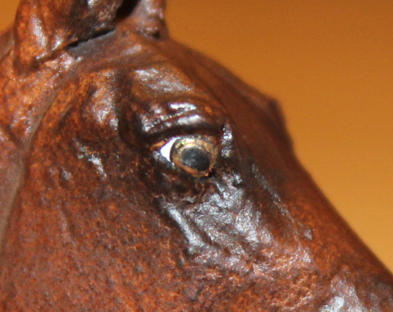 How to Paint Brown Horse Eyes in Acrylics 16348153195_d6d4c7ec29_o