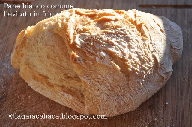 white gluten free bread - pane bianco comune lievitato in frigo intero