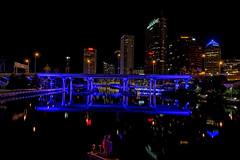 Tampa at Night-12