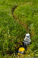 Lawnmowing02_stor
