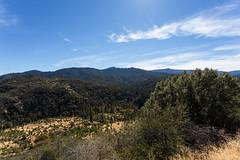 Kings Canyon & Sequoia - 192