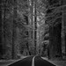 Returning to the Road of Good and Evil by C A Soukup
