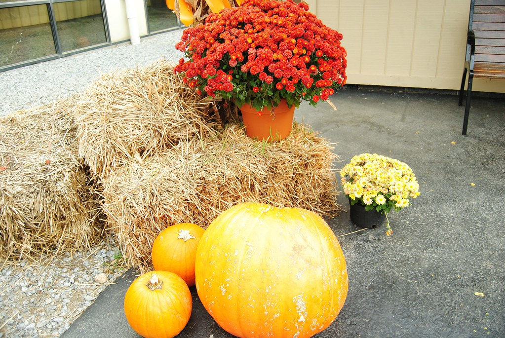 Gatlinburg Fall Decor