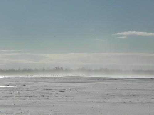 winterwind