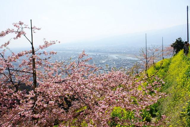 2014-03-16_00101_高松山
