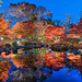 Time of Reflection by Suzuki san