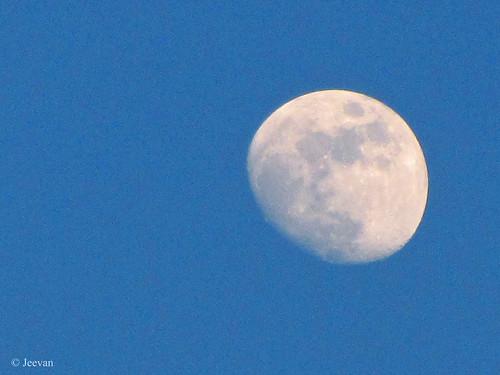 Moon of December