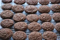 anzac biscuit, baking, baked goods, cookies and crackers, food, cookie, snack food,