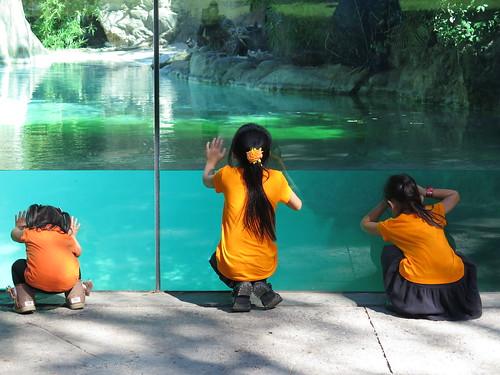 Zoo 10.17.2014